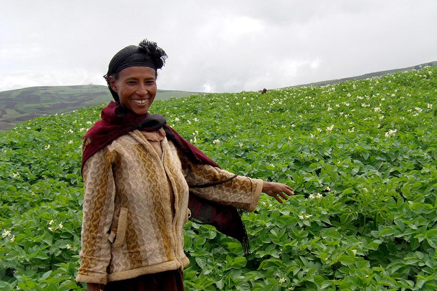 A-farmer-proudly-showing-her-potato-field-Credit-Solomon